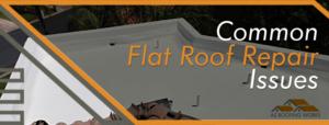 Flat Roof Repair Issues