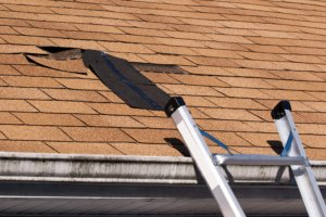 roof blistering